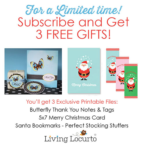 Subscribe for Free Gifts!