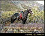 Horseback Fitness Adventure