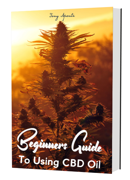 Beginners Guide to CBD Oil.png