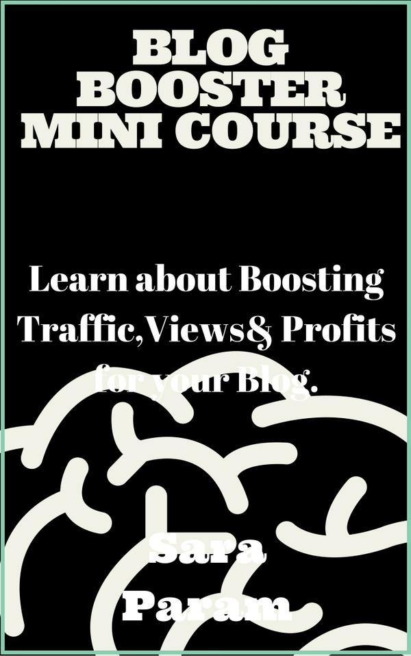 Blog_Booster_Mini_Course1.jpg