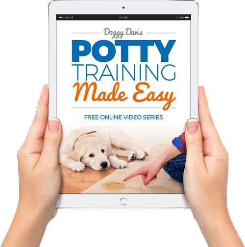 potty training made easy doggy dan sales page.png
