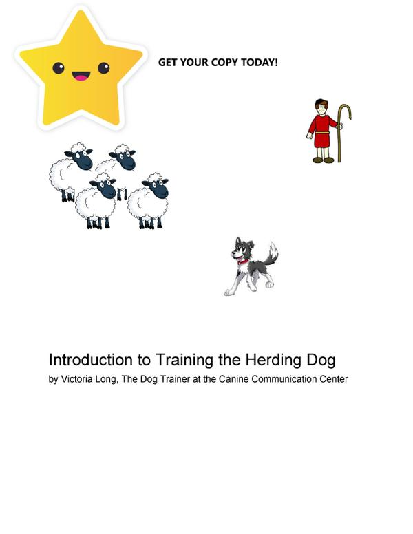 Introduction to Training the Herding Dog