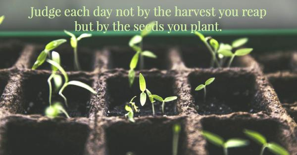 Judge each day not by the harvest.jpg