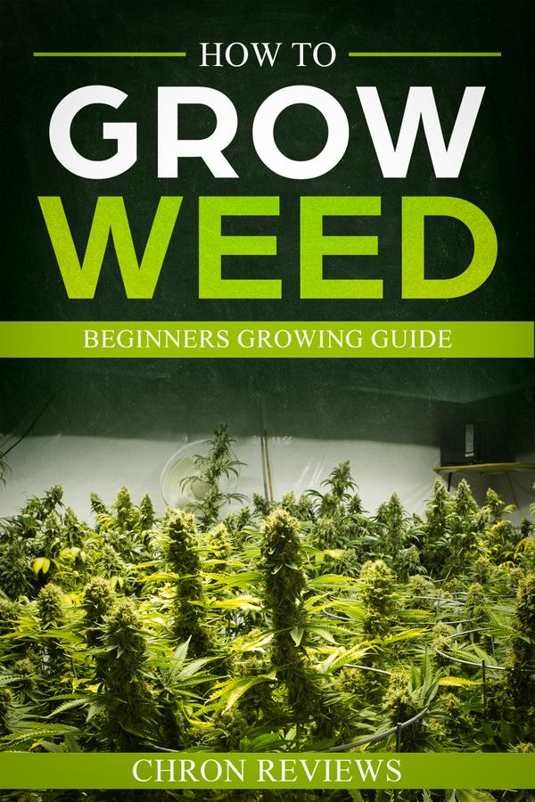 How To Grow Weed - Beginners Growing Guide by Chron Reviews