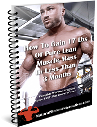 muscle building report v2 200.png