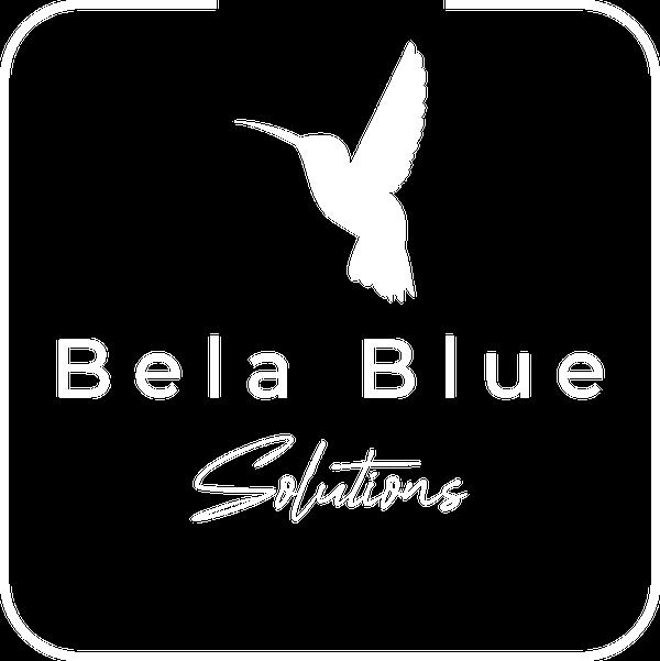 Free Email Newsletter Workbook | Bela Blue Solutions