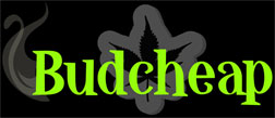 budcheap-logo-new-01.jpg