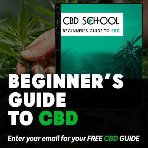 CBD_free_ebook_1.png