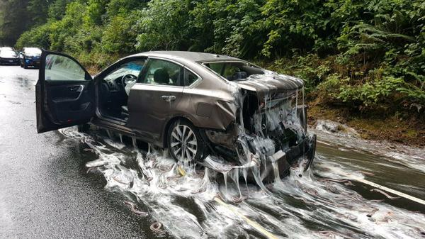 One of the slimed and crashed cars