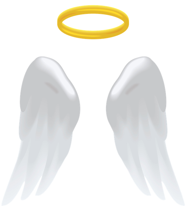 Angel_Wings_-_Hi-res_32782822_l__Clipped_rev_2.png