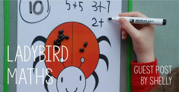 Guest post - Ladybird maths