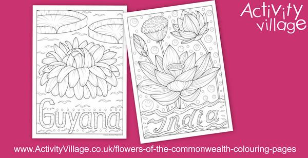 This week's flowers of the Commonwealth colouring pages come from Guyana and India.