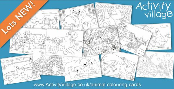 Topping up our collection of animal colouring cards