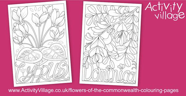 National flower colouring pages for Cyprus and Dominica