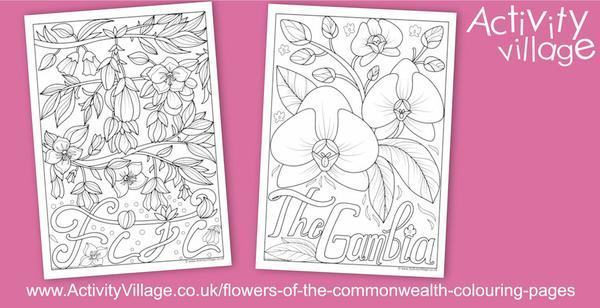 Colour the national flowers of Fiji and Gambia