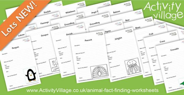 A big batch of new animal and bird fact finding worksheets