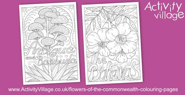 Flowers of the Commonwealth Colouring Pages