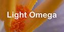 Light Omega