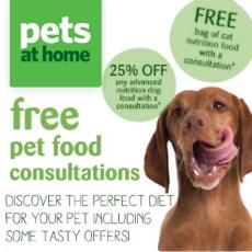 Dog food consultation
