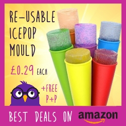Reusable Ice-Lolly Mould just 29p