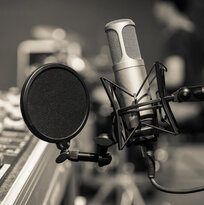 Condenser mic and pop shield