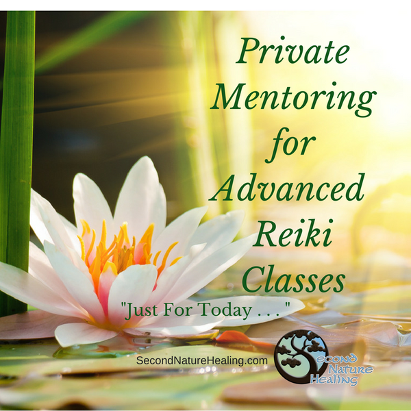 private mentoring for advanced Reiki classes
