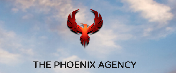THE_PHOENIX_AGENCY_DRONE_AND_TRACKING_FOR_REALTORS.png