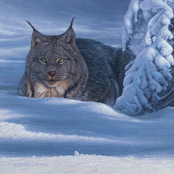 Winter Bundle - Derek C Wicks