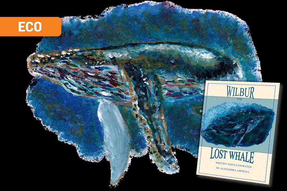 Wilbur the whale