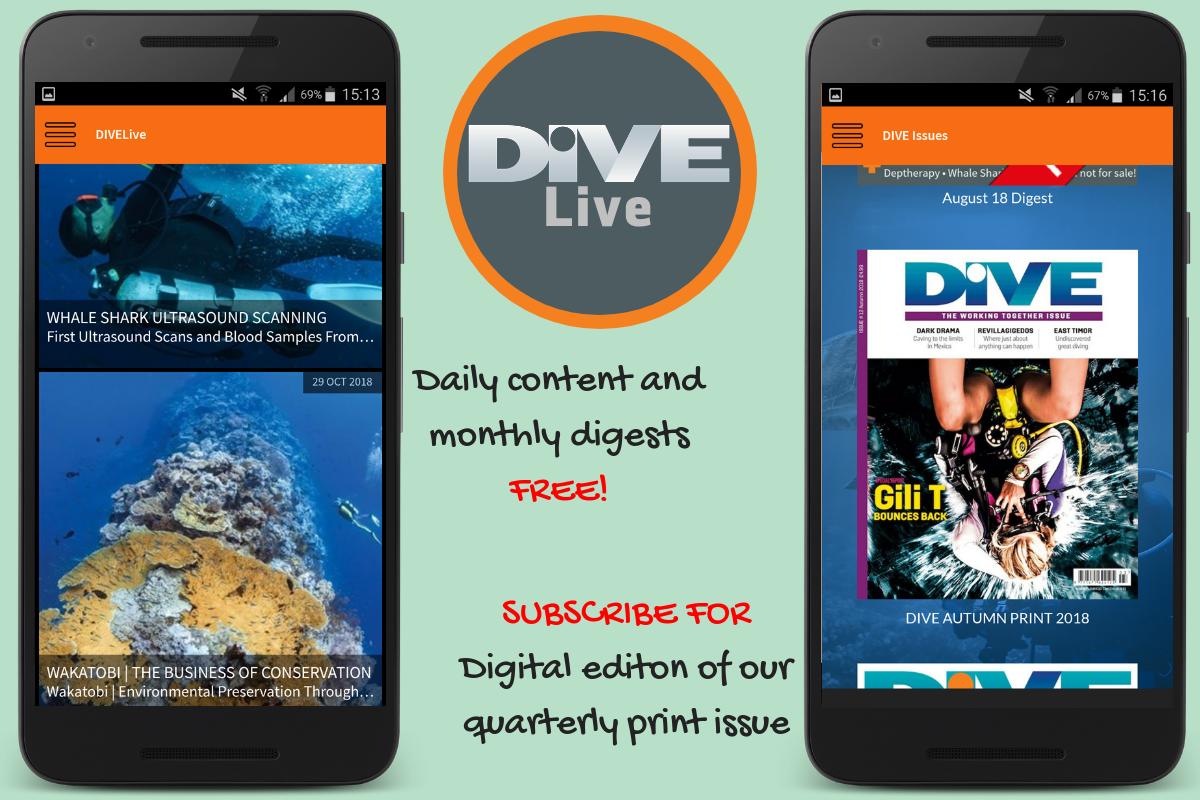 Dive Live
