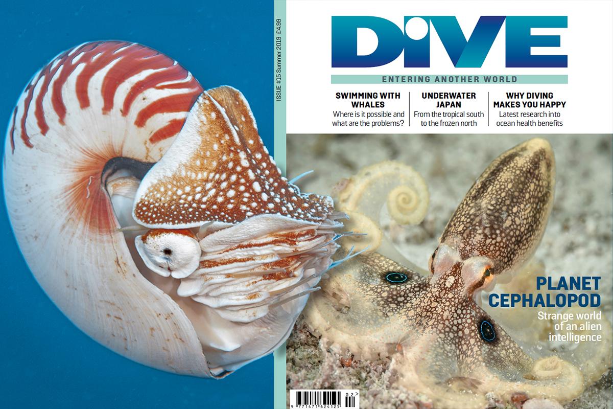 Summer Print Issue
