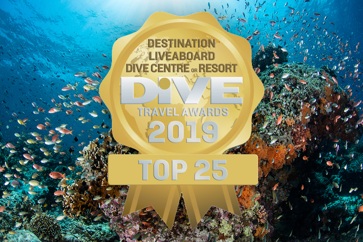 DIVE Travel Awards 2019
