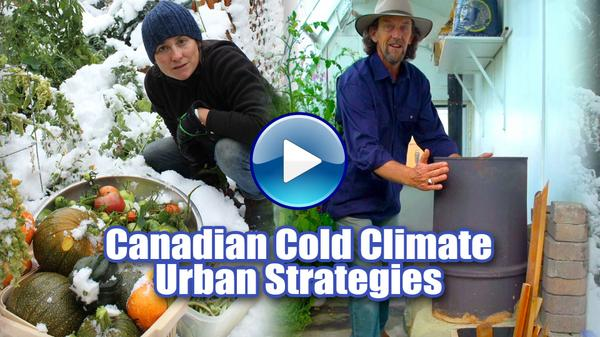 Canadian Cold Climate Urban Strategies