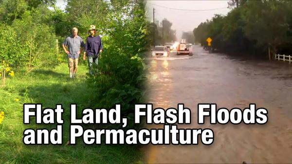 Flat Land Flash Floods and Permaculture