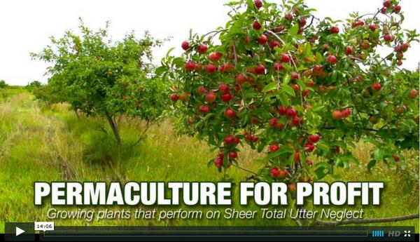 Permaculture for Profit