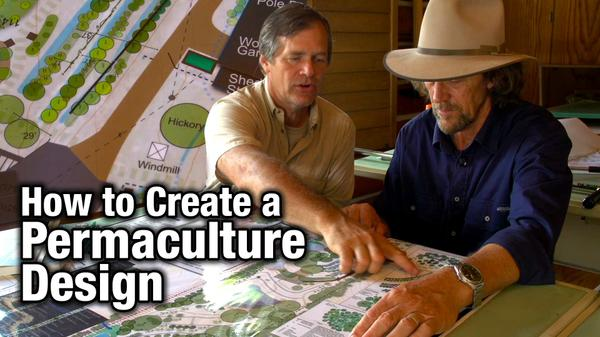 How to Create a Permaculture Design