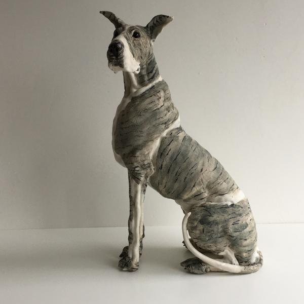 Great Dane, gallerytop