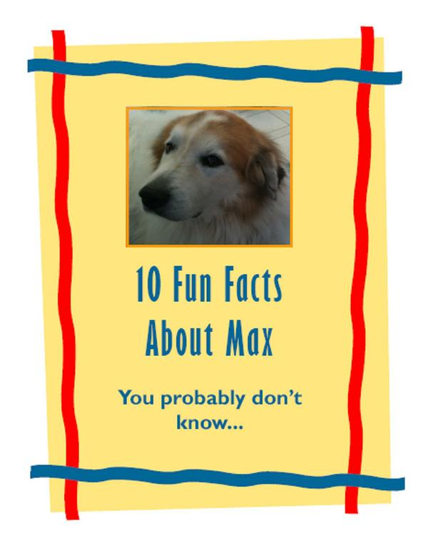 10 Facts About Max Cover.jpg