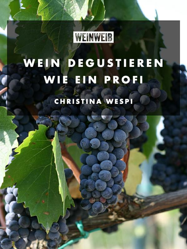 Wein degustieren wie ein Profi von Christina Wespi