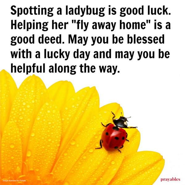 "Spotting a ladybug is good luck. Helping her ""fly away home"" is a good deed. May you be blessed with a lucky day and may you be helpful along the way."