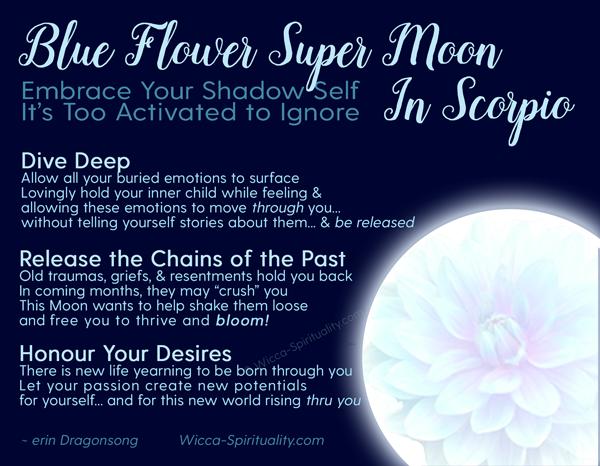 Blue Flower Super Moon in Scorpio