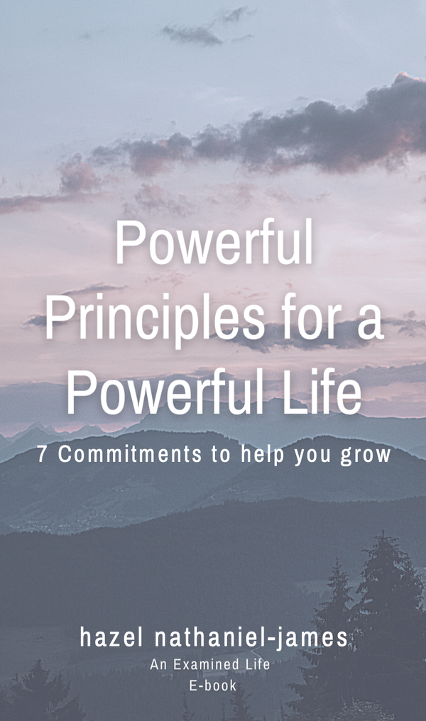 Powerful Principles for a powerful life book