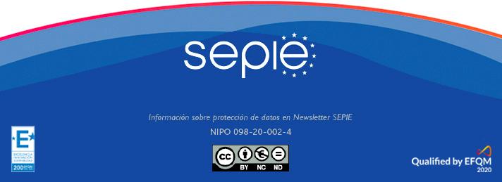SEPIE Newsletter - Nº 31