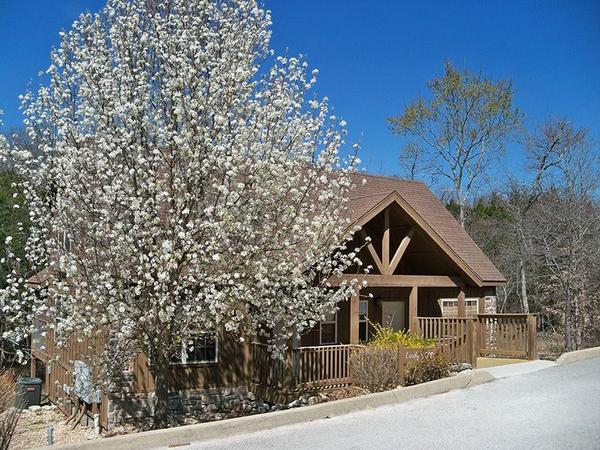 Woodland Romance Lodge