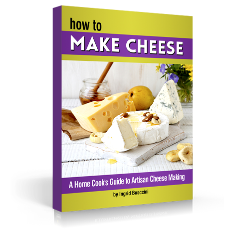 3d_Cheese_Book_3.png