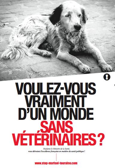 Mobilisation des vétérinaires le 06 novembre 2013 527934ba84c49f7d97465aad