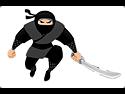 AWeber and Ninja Popups for Wordpress
