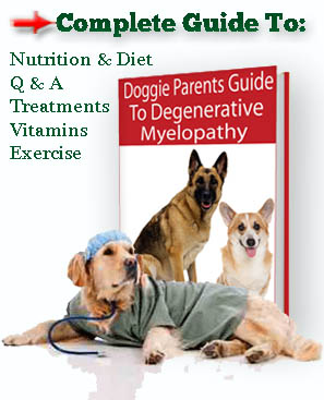 Complete Guide to Canine Degenerative Myelopathy Ebook