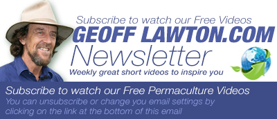 Geoff Lawton Pty. Ltd.